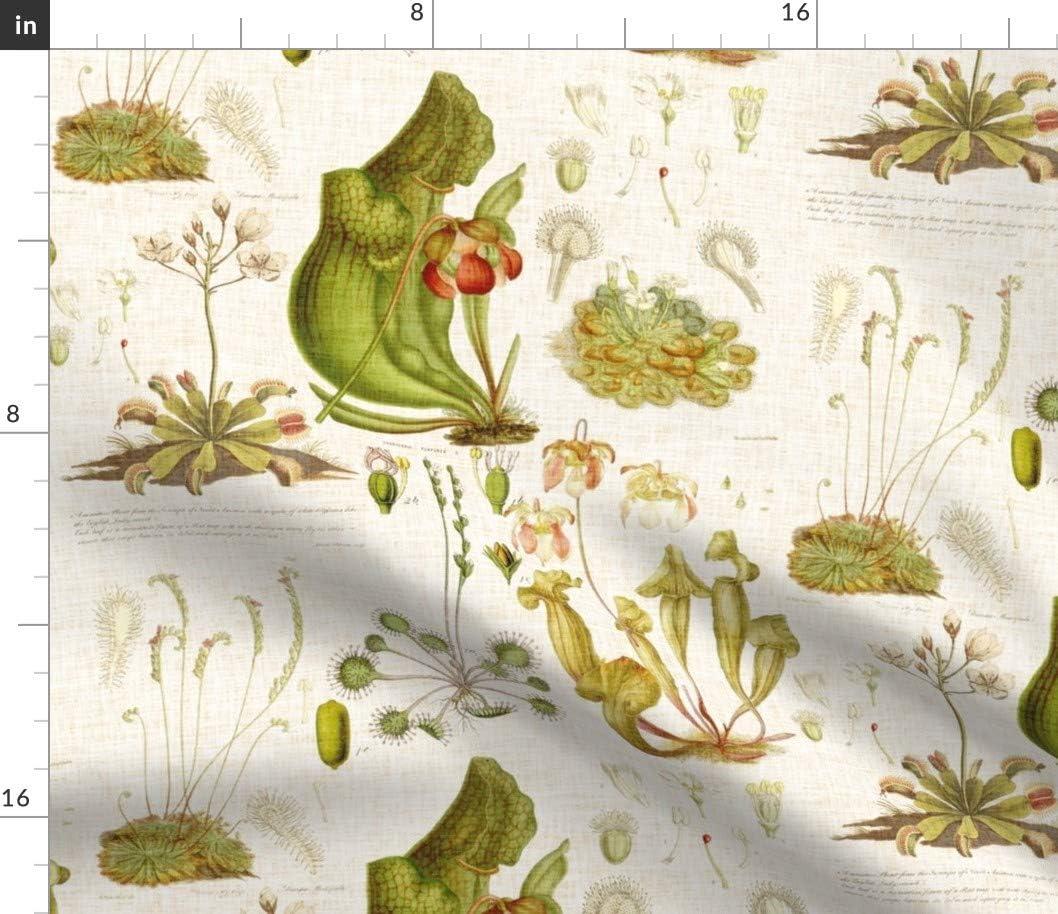 アウトレット☆送料無料 Spoonflower Fabric 日本産 - Plants Plant Eating Botanical Man Vinta Fly