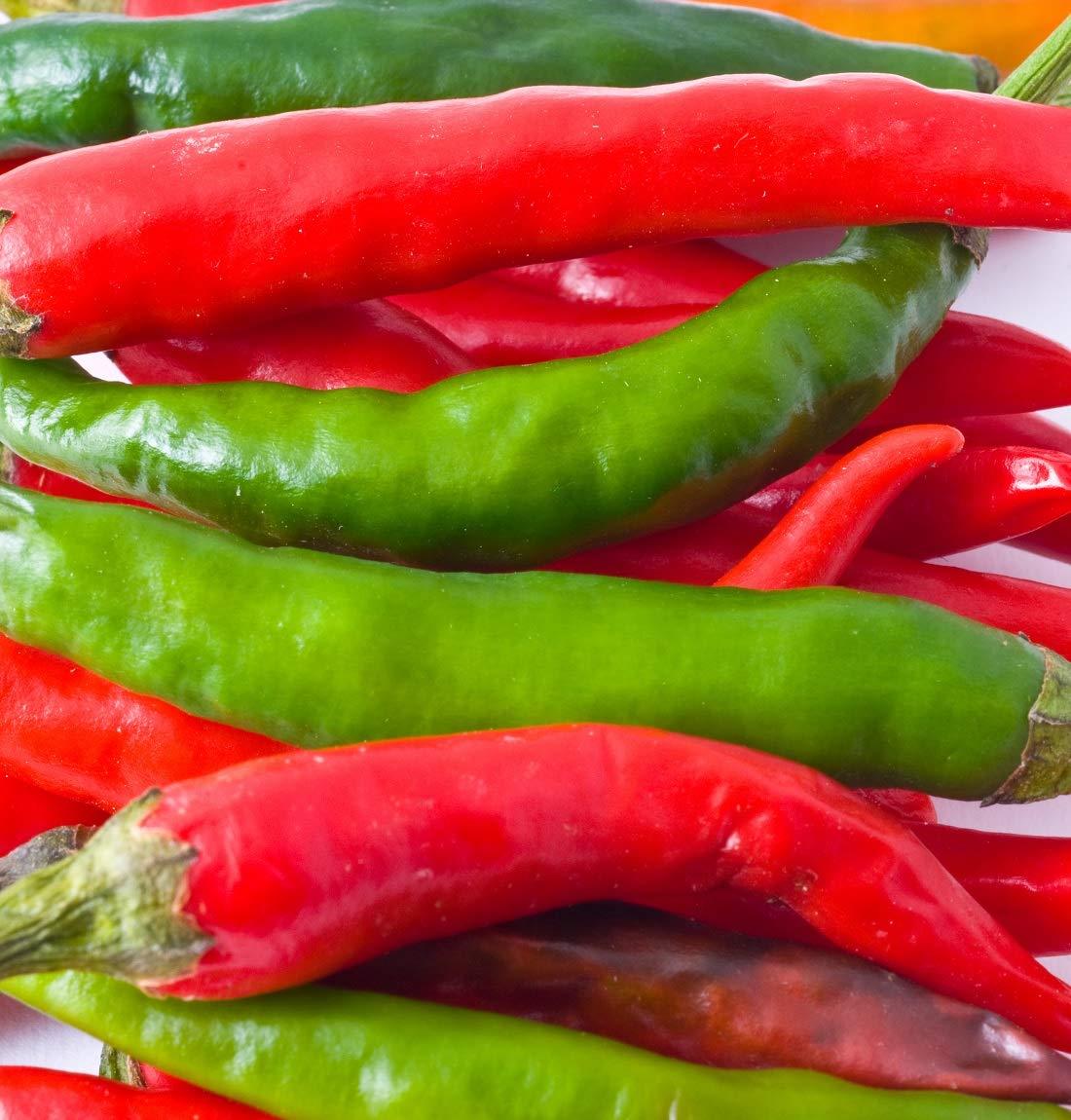 David's Garden Seeds Pepper Hot Korean Long Green SZ9227 (Red) 25 Non-GMO Hybrid Seeds