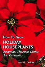HOW TO GROW HOLIDAY HOUSEPLANTS: Amaryllis, Christmas Cactus, And Poinsettias