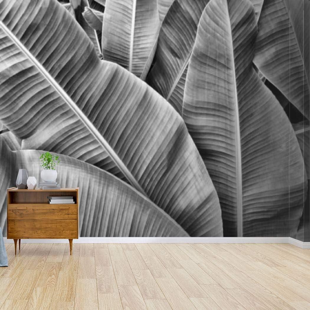 Kanworse Ultra-Cheap Deals Tropical Banana Palm Leaves Wallpaper Wall Print Canvas Philadelphia Mall