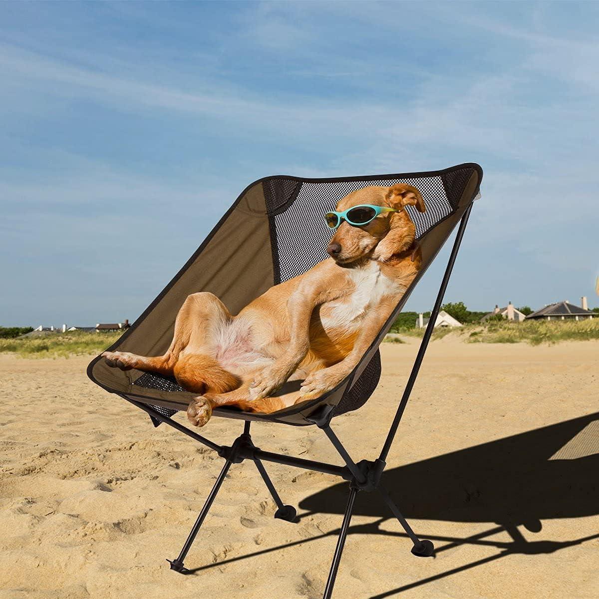 dog sitting on KAMUI camp chair