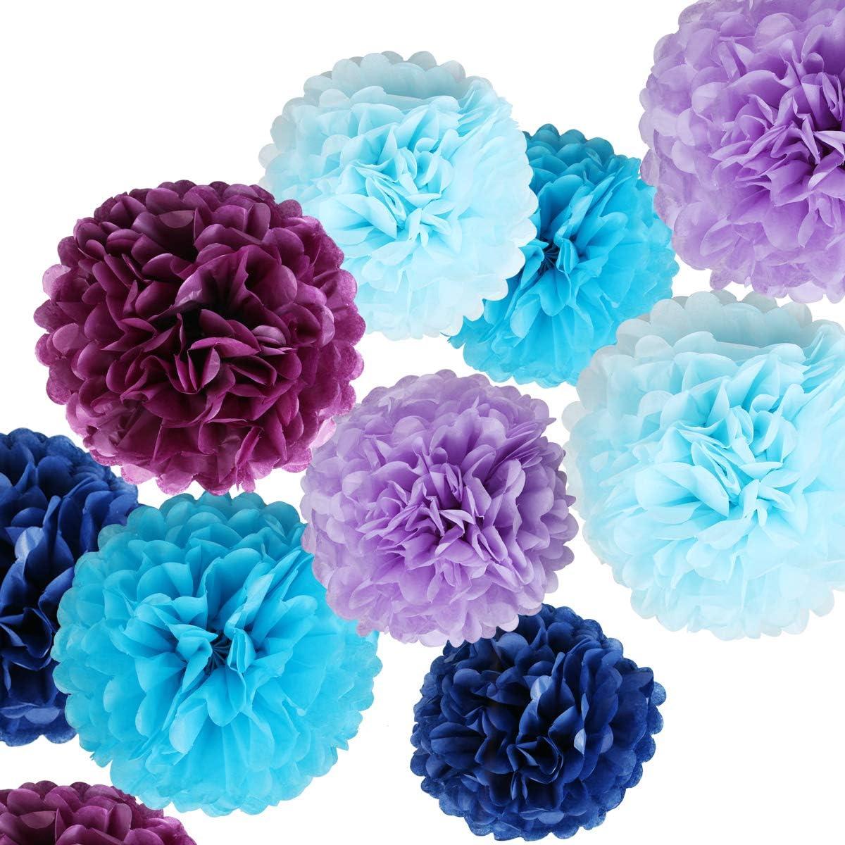 12 inch, Aqua Blue 5pcs Tissue Paper Pom-poms Robins Egg Blue Flower Ball Wedding Party Outdoor Decoration Tissue Balls Baby Shower Birthday Party Paper Ball Decor