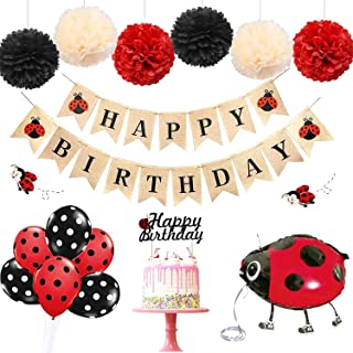 Best ladybug birthday theme Reviews