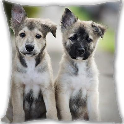 Amazon com: Picture Pillow Custom Pet Pillow Dog Pillows