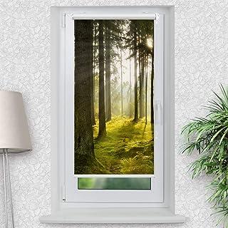 Motiv Rollo Premium Wald Blatter Baume Seite 2 Foto