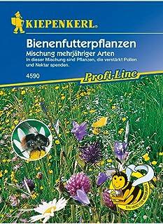 Bienenfutterpflanzen Mischung mehrjähriger Arten