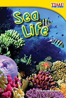 Best time for kids sea life Reviews