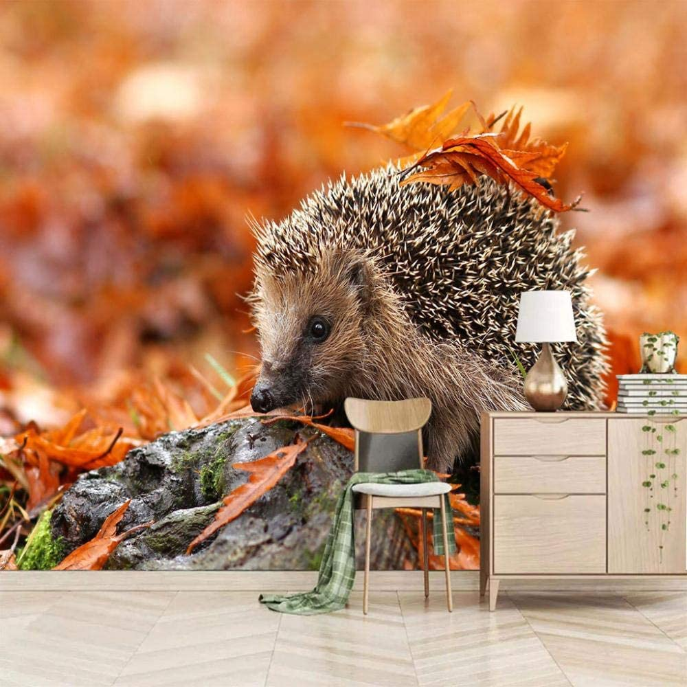 Large Photo WallpaperMaple Safety and trust Hedgehog Ranking TOP1 157.5x110 Mural Peel inch