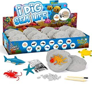 XXTOYS Sea Animals Dig Excavation Kit for Kids Ocean Life Bath Toys Figures Party Favors Underwater Life Creatures Toddler Cupcake Toppers Science Education Stem Gift for Birthday Party 12 Packs