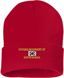 FUTURE PRESIDENT OF SOUTH KOREA Custom Personalized Embroidery Embroidered Beanie