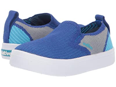 Native Kids Shoes Miles 2.0 Liteknit (Toddler/Little Kid) (UV Blue/Pigeon Grey/Hamachi Blue) Kid