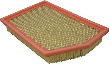 Pentius PAB11877 Air Filter