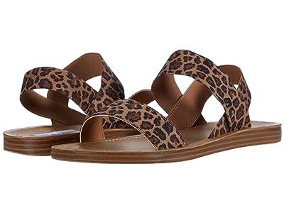 Steve Madden Roma Flat Sandal (Leopard) Women