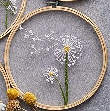 Europees mesh borduurwerk, borduursets Diy borduurwerk voor beginners DIY huisdecoratie, DIY bloemen schilderen Volledige ...