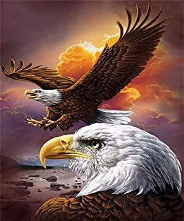 Diamond Paintings WisLotife Full Drill Round Rhinestone Crystal Embroidery Pictures for Home Wall Decoration American Eagle 16x12