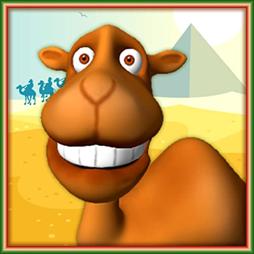 Falar Camel