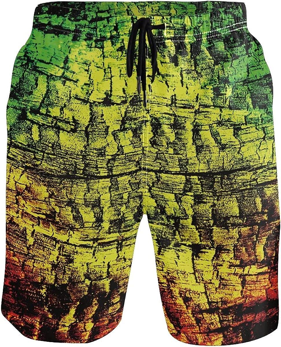White Men's Reggae Background Beach Shorts Quick Dry Mesh Lining Swimming Shorts