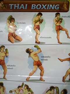 muay thai pictures