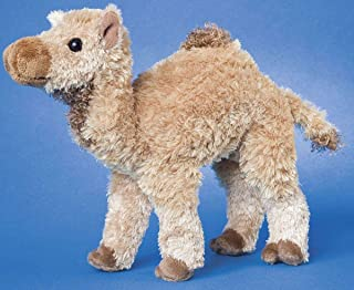 Lawrence Camel 8
