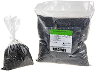 Organic Unshelled Sunflower Seed- 5 Bags Pre-Measured for a 10