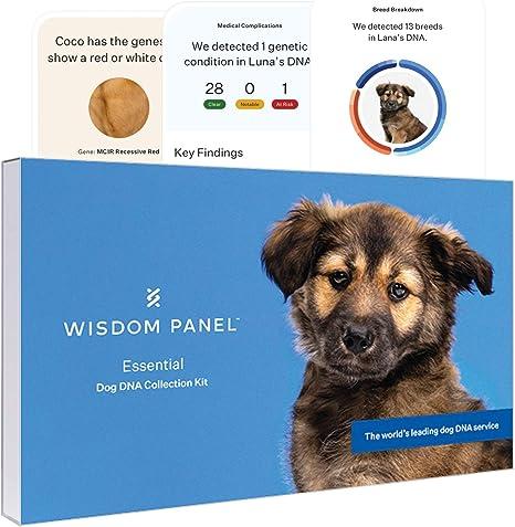 Dog DNA Test: Wisdom Panel Essential