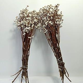 Tallow Berries Dried,Natural Stem Wedding Floral Décor - Long Stem