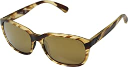Driftwood Brown 12-Polarized Gold Mirror