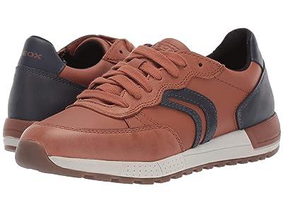 Geox Kids Jr Alben 8 (Big Kid) (Brown/Blue) Boys Shoes