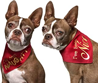 Tail Trends 2 Pack Christmas Dog Bandana with Assortment of Styles for Pet Gifts Fits Medium to Large Sized Dogs 100% Cotton