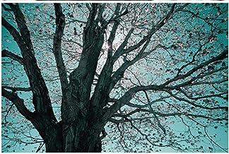 Papel Pintado Pared Papel Pared Cielo Azul Sol Gran Árbol Paisaje Natural Papel Pintado 3D Mural Pared Fotomurales Decorat...