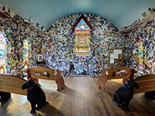Photograph- Hundreds of messages from dog owners and dog lovers are tacked to the walls at the Dog Chapel, indeed, a quite serious chapel devoted to departed and/or beloved canine pets 44in x 32in
