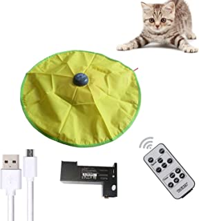 AOLIKES Interactive Cat Toys,Durable Smart Cat Toys with Remote, Multiple Timers,Undercover Motorized Mouse Tail for All Ages Cat, Rotating Catch Training for Indoor Cats (V4 Version)