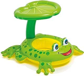 Intex Shaded Frog Float pool