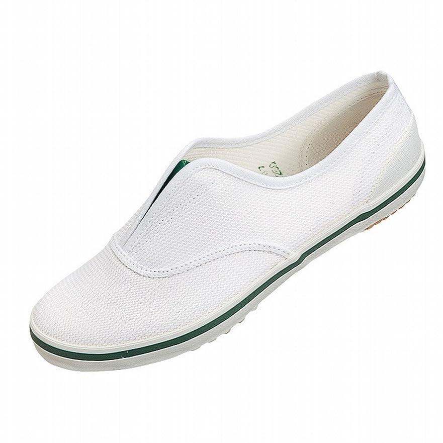 手当議論する離婚[ムーンスター] スクールエース3型 上履き 上靴 室内履き 体育館シューズ 21-30cm