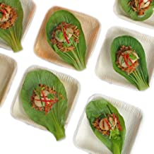 Thynk Palm Leaf Plates - 4.5 Inch Square Mini Tasting Plates - All Natural 100% Biodegradable and Compostable - Disposable Dinnerware - Perfect Party Plates - 20 Count