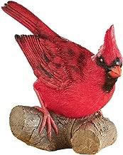 cardinal outdoor decor