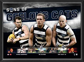 Sport Entertainment Products Geelong Cats 'Sons of Geelong'