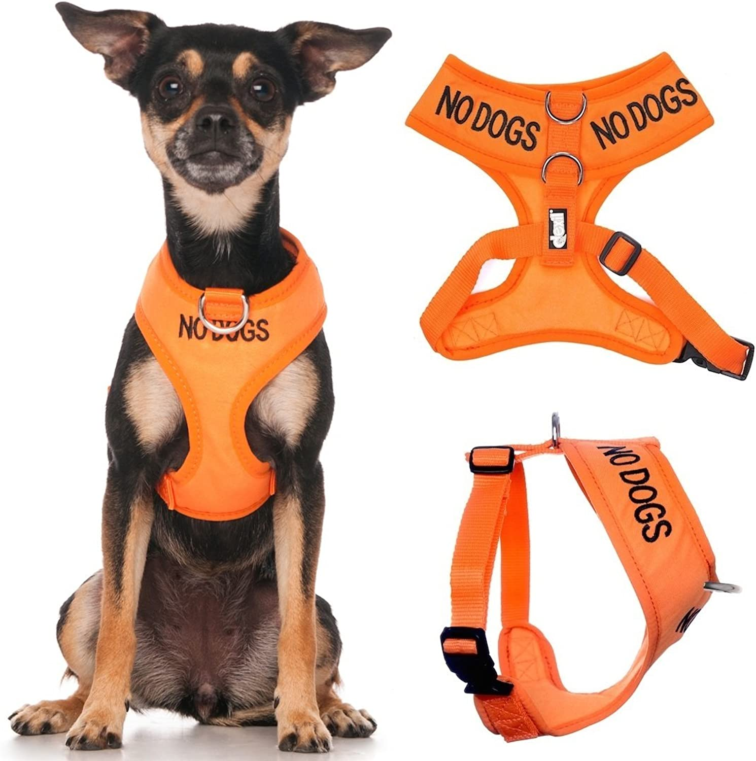 NO Dogs (Not Good with Other Dogs) orange color Coded NonPull Front and Back D Ring Padded and Waterproof Vest Dog Harness Prevents Accidents by Warning Others of Your Dog in Advance (XS)