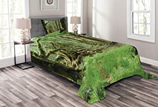 Ambesonne Rainforest Bedspread, Roosevelt Elk in Rainforest Wildlife National Park Washington Antlers Theme, Decorative Quilted 2 Piece Coverlet Set with Pillow Sham, Twin Size, Forest Green