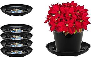 "Curtis Wagner Plastics DS-800B Carpet Saver Plant Tray Drip Pans (5-Pack) - Black, Round (Diameter = 8"" top, 6"" Bottom, 1.5"" Depth) Thick Plastic Indoor & Garden - Clear, Black & Terracotta"