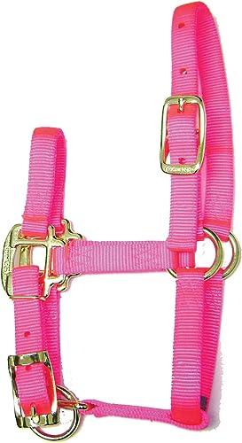 Hamilton 3/4-Inch Adjustable Quality Horse Halter, Pony or Average Miniature Donkey, Hot Pink