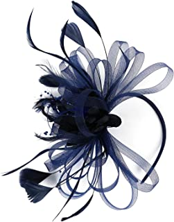 Merya Dress Kentucky Derby Fascinators Mesh Cocktail Headwear Feather DotVeil Tea Party Hat for Church Ball Wedding