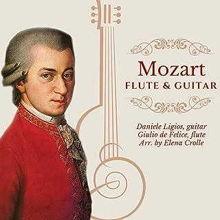 Best petite gavotte flute Reviews