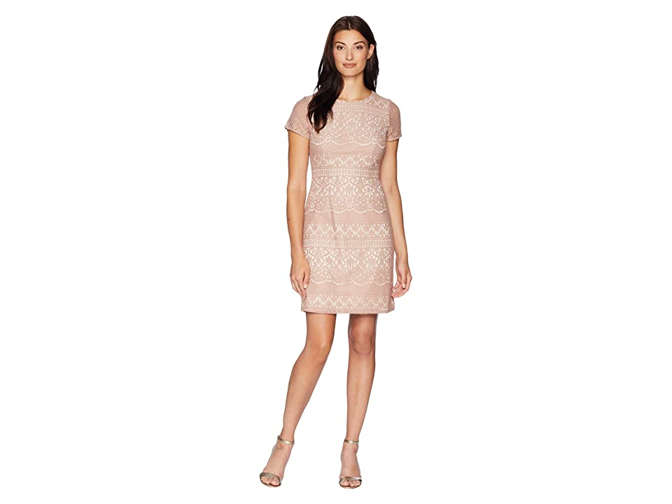 Adrianna Papell Scalloped Striped A-Line Dress (Pink/Almond) Women
