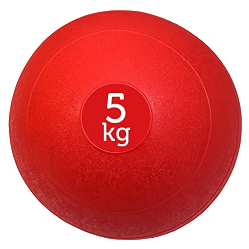 FXR Sports Red No Bounce Training Slam Ball 3-20kg MMA Boxing Fitness With Free A3 Workout Poster