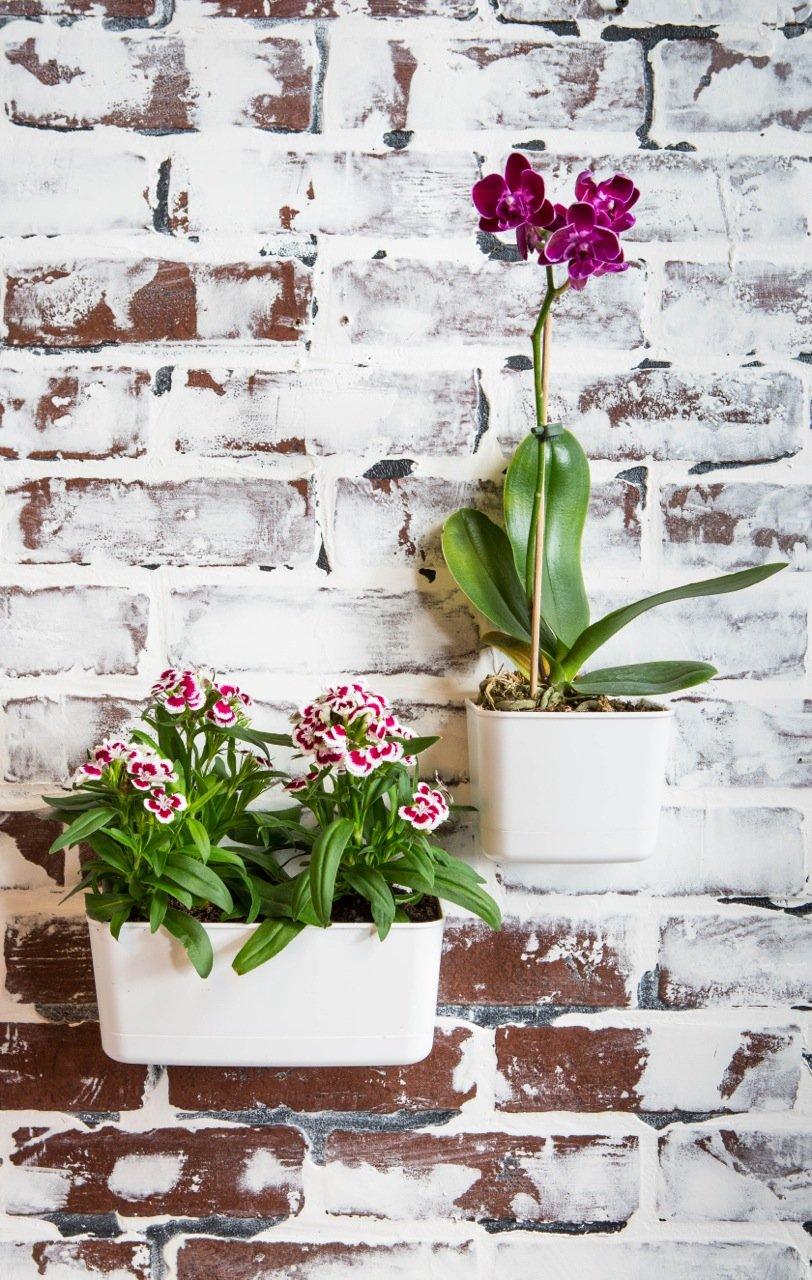 Vertibloom Living Wall Garden Starter Kit - Modular Indoor Vertical Planter System