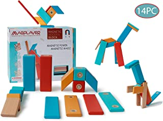 dreambuilderToy Wooden Magnetic Block Set, 14 Wooden Magnetic Tiles, STEM Magnetic Wooden Building Tiles (14 PCS)