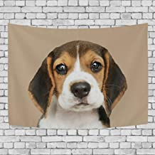 Blue Viper Adorable Beagle Puppy Dog Tapestry Wall Hanging Artistic Home Wall Décor for Living Room Bedroom Dorm Wall Décor 80 x 60 Inches