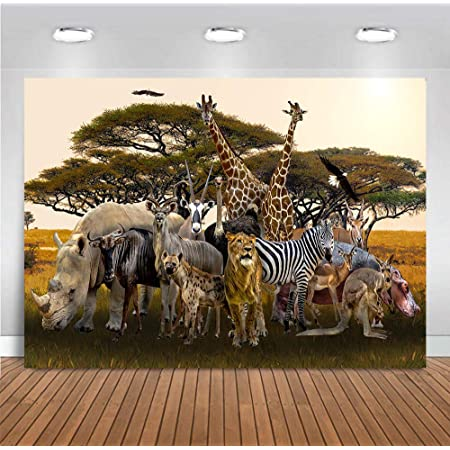 7x7FT Vinyl Photo Backdrops,Striped Safari Animal Skin Photoshoot Props Photo Background Studio Prop