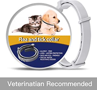 Upgraded Pet Collar For Cats,  Dog Collar Adjustable WaterProof - Safe - 12 Months Protection for The Cat and Dog Control Collar